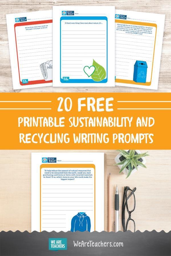 sustainability argumentative essay