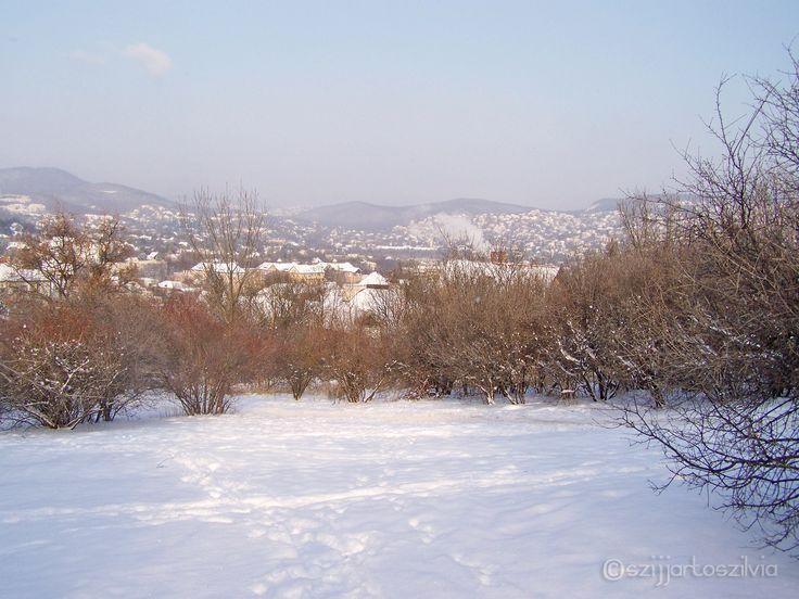 Budapest 201202 - Kissvábhegy