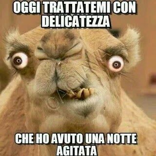 115 best images about buongiorno buonanotte weekend on for Buon weekend immagini simpatiche