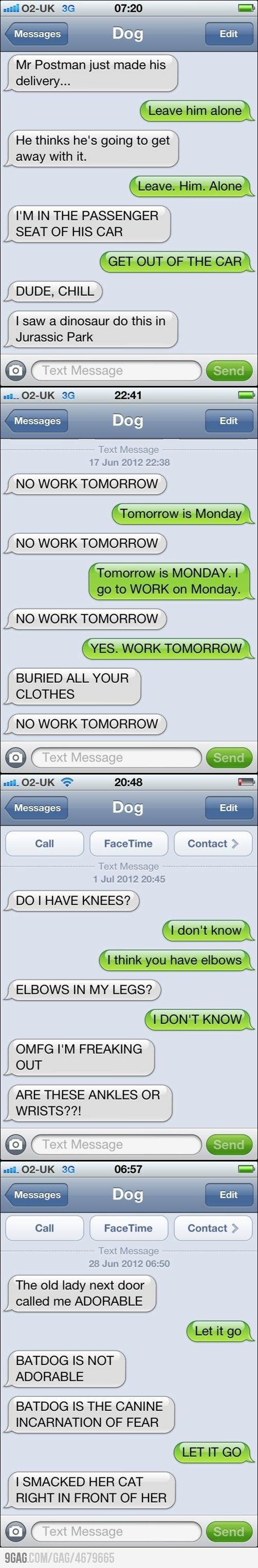 What my dog would probably say if he could text