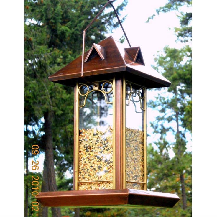 1000+ ideas about Diy Bird Feeder on Pinterest | Bird ...