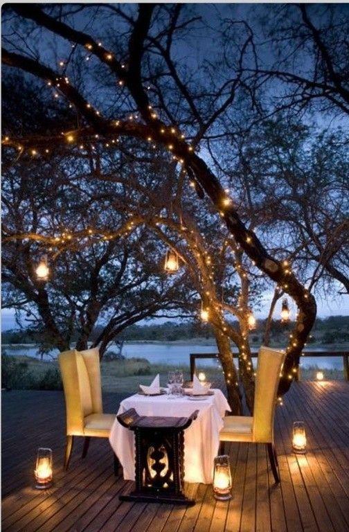 Viele Häuser schmücken Bäume mit Streichern der Lichter rund um den Urlaub, aber diese Art von Beleuchtung können ganzjährig mit großem Erfolg verwendet werden. Dieser Baum ist gut beleuchtet durch gelbe Zeichenfolge Lichter,