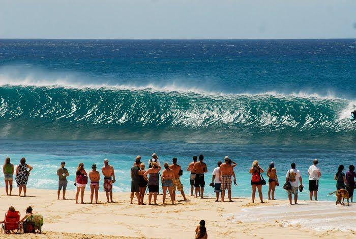 Oceano Surfwear: Ondas do Hawaii