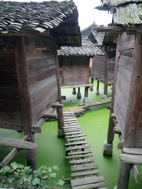 So charming. I feel like I could hop in and get the spa treatment from the water. Probably not a good idea, but it sure looks enticing!  Chinese Water Village  #monogramsvacation