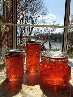 I never heard of Hot Pepper Jelly until I moved to the south 20 years ago.  I remember attending a cocktail party and seeing a block of cre...