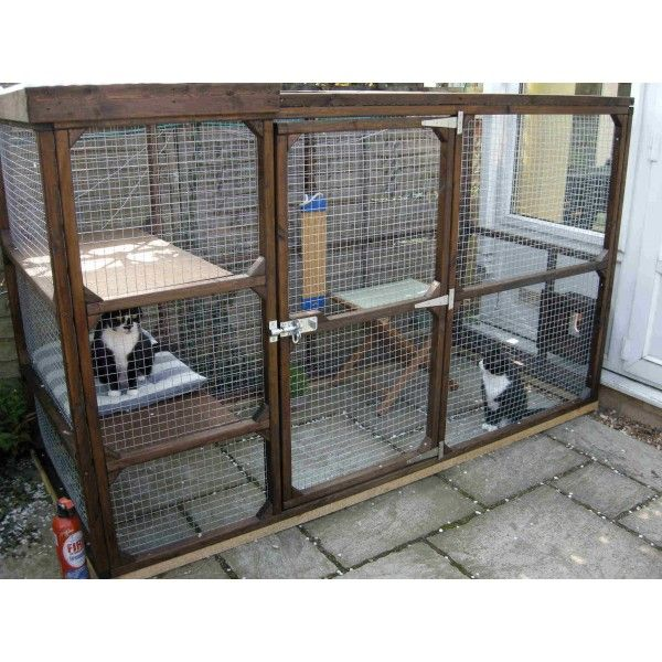 Katy Outdoor Cat Run with Tunnel to Cat Flap-Essex
