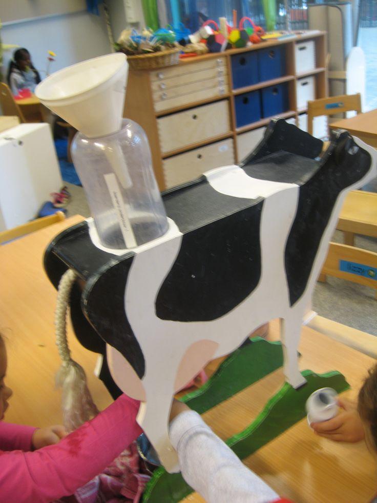 Een koe melken in de klas; een drupje witte verf in de watertafel zorgt voor melk!