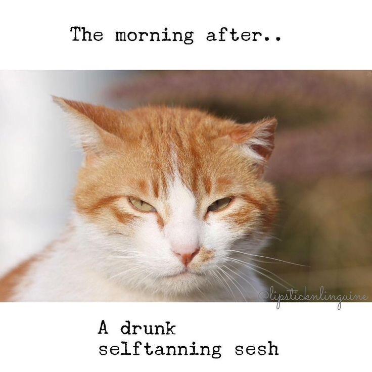 Just me? Hahaha that orange life though! #bblogger #bbloggerau #selftanner #tan #beauty #ginger #cat #coig #tanner #faketan