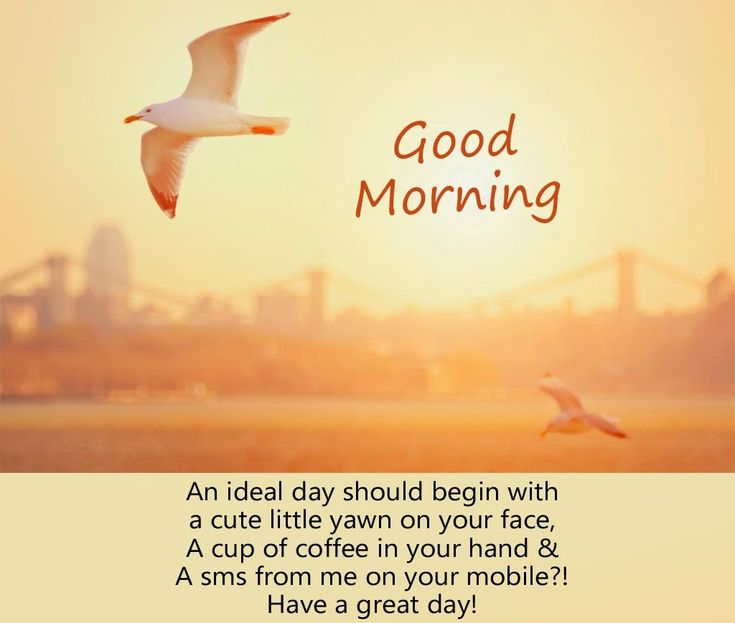 Sweet Good Morning Quotes Wonderful Good Morning Quotes For Someone Special Check More At Http .