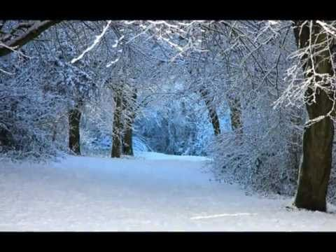 ▶ Sarah McLachlan ~ Wintersong One of the most beautiful Christmas songs I've ever heard...