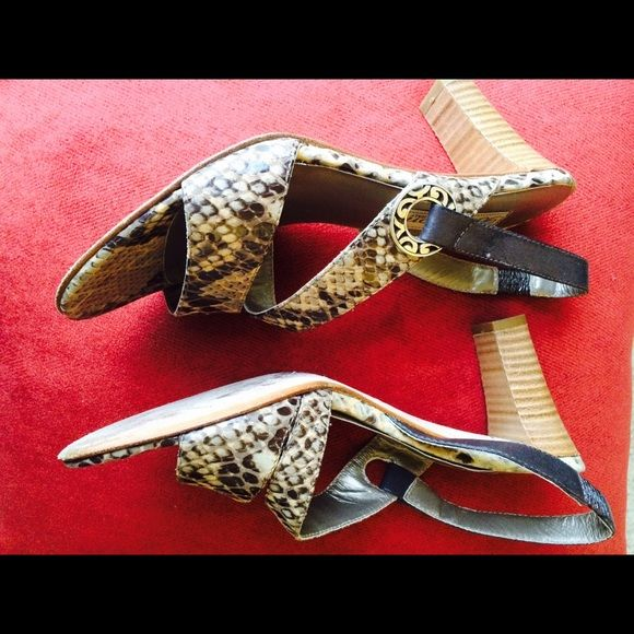 Brighton sandals in snakeskin Brighton sandals in snakeskin, leather with wood heal, and signature Brighton silver detailing. For a narrower foot. Brighton Shoes Sandals