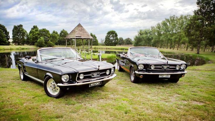 Mustangs in Black 1966 and 1967 GT Convertible Ford Mustangs out for Sharon and Adam's wedding shoot at Glen Erin at Lancefield.
