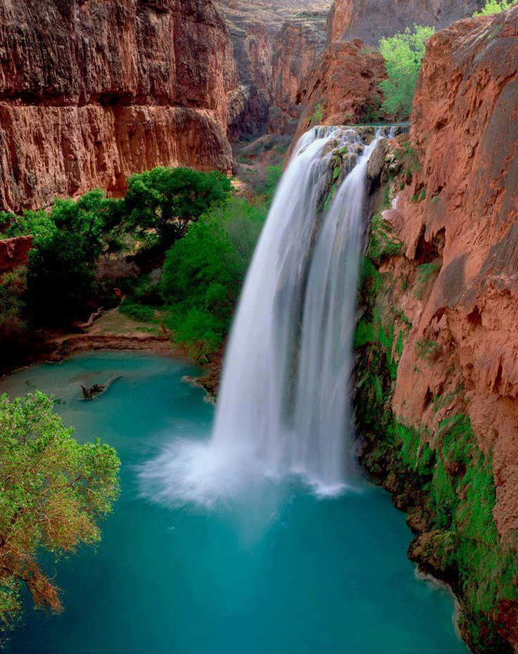 Havasu Falls - Havasu Falls located in Grand Canyon. Tourist from all over the world coming continuously to visit this beautiful scenery. This blue water contain with high mineral, because most of the waterfalls in Canyon created by mineralization, so sometimes it break into two separate chutes.