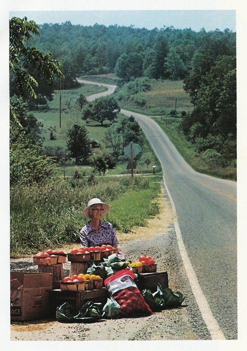 """""""Mrs. A. C. Cruse sells fruits and vegetables by the side of State 60 in northern Georgia.""""Country Living, States 60, Cruse Sell, Farms Life, Country Life, Sell Fruit, Real Food, Northern Georgia, Fruit And Vegetables"""