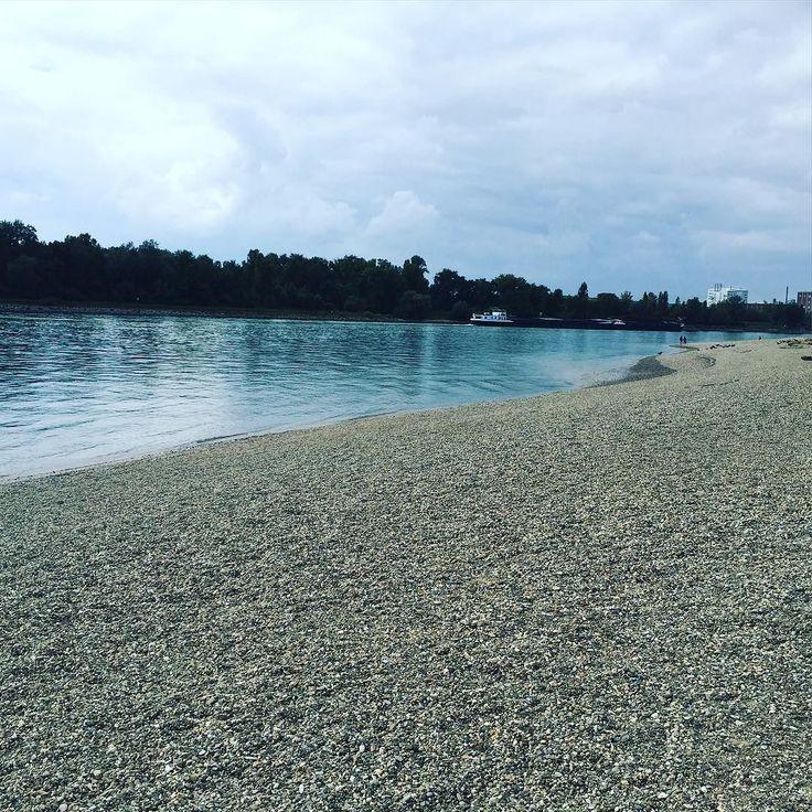Unser Rhein in Mannheim am Strandbad. Immer wieder schön.
