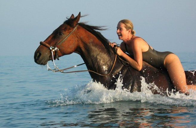 Many times I have been horseback riding on vacation, never like this.... Crete, Greece.  Yes, please.