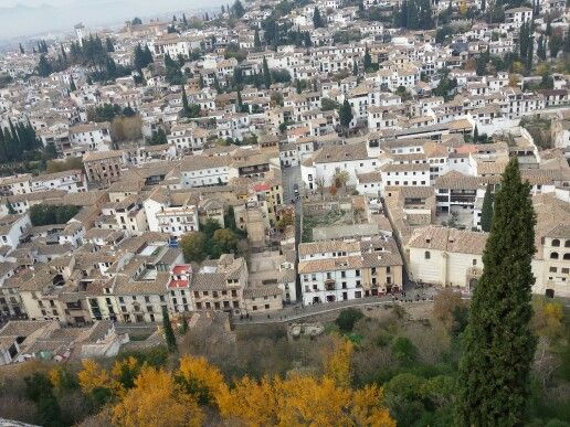 View from the Alhambra Palace #espana #europe #wendybennettartist