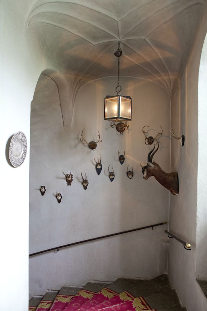 love these antlers! and the walls....and the pink rug!  enchanting ;)  An Enchanted Castle in Sweden : Remodelista