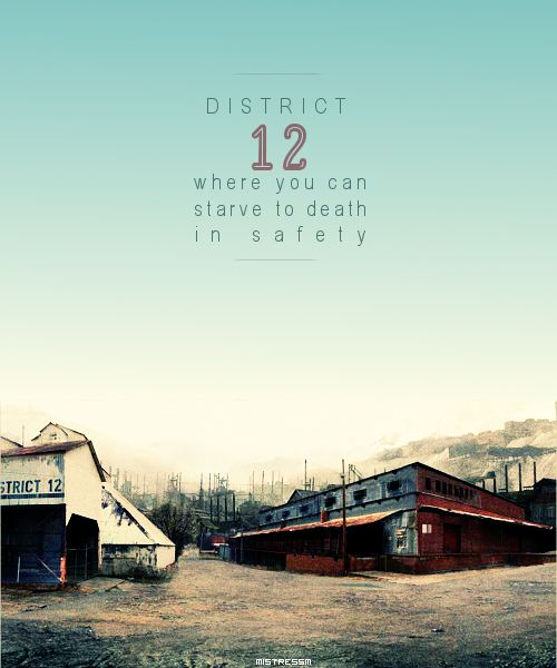 Hunger Games District 12 Sign District 12 | Happy Hu...