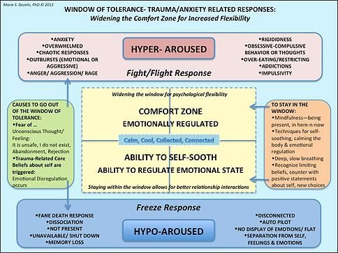 Stress model and window of tolerance - explore Meditation ○ Deep diaphragmatic breathing ○ Tapping ○ and BodyTalk for diminishing anxiety and stress responses.