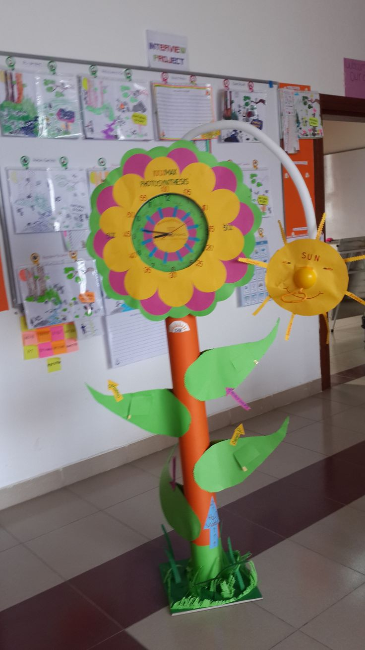 Project is about Photosynthesis and Time