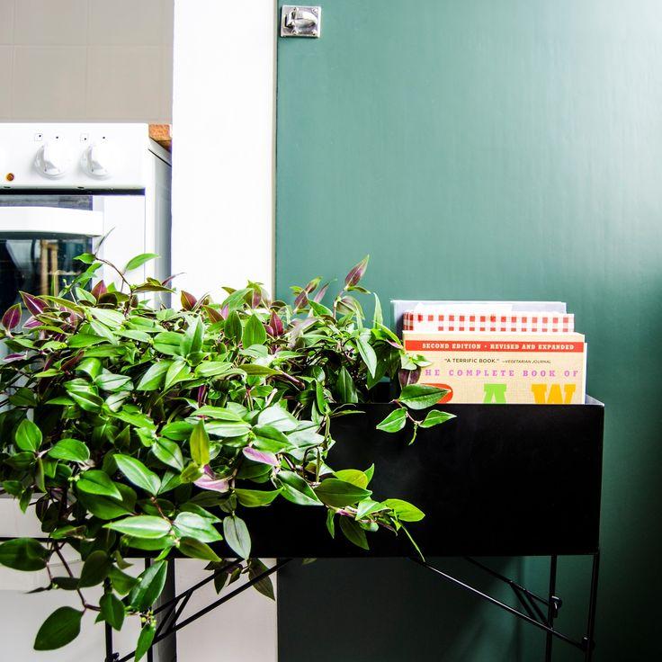 Blombord HANGOUT. 50x16x56 cm . Blombord som passar perfekt för blommorna på balkongen, altanen eller varför inte som förvaringsmöbel.  För bästa hållbarhet und