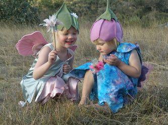 Australian Gumnut fairies