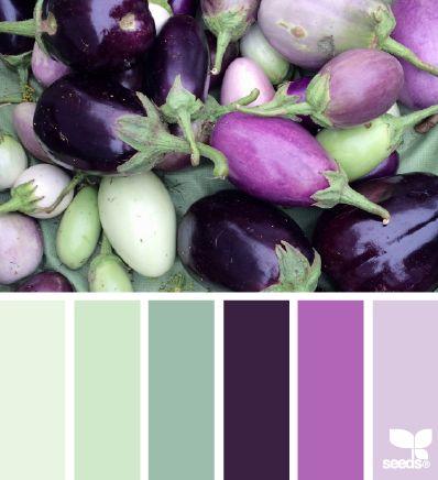 eggplant palette (design seeds)