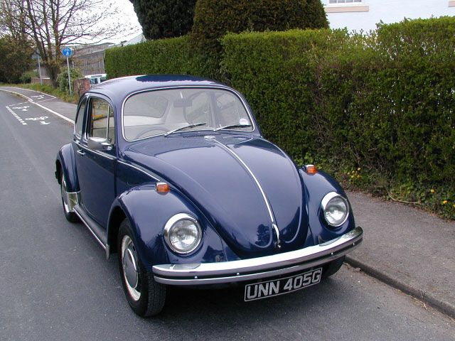 Royal Blue VW Bug would be my type of car.