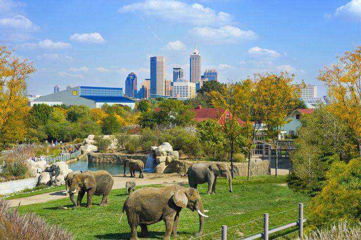 Denver Sightseeing: 10Best Sights Reviews