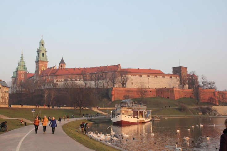 Old Castel Wawel #castle