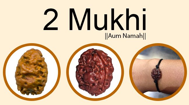 Two Mukhi Rudraksha:  Two Mukhi Rudraksha's controlling planet is the Moon. It is good for self confidence and controls a wavering mind. It helps in overcoming depression and is extremely effective in building strong relationships. This Rudraksha also instills immense confidence in its wearer and helps him take right decisions quickly. http://www.rudralife.com/Rudraksha/details.php?id=109