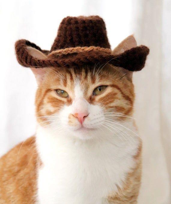 Cowboy Hat For Cats Bandana Add On Option Cowboy Halloween Etsy Hat For Cat Cat Bandana Cat Costumes