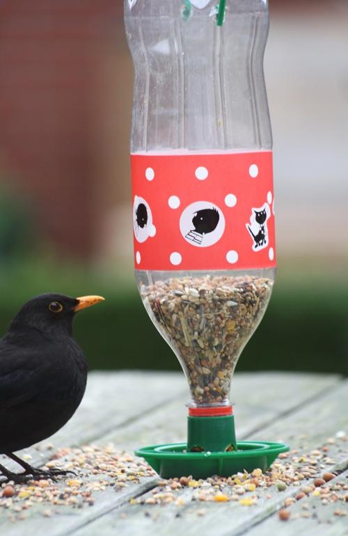 Leuk Vogelvoederbakje Met Een Pet Fles Knutselen Met