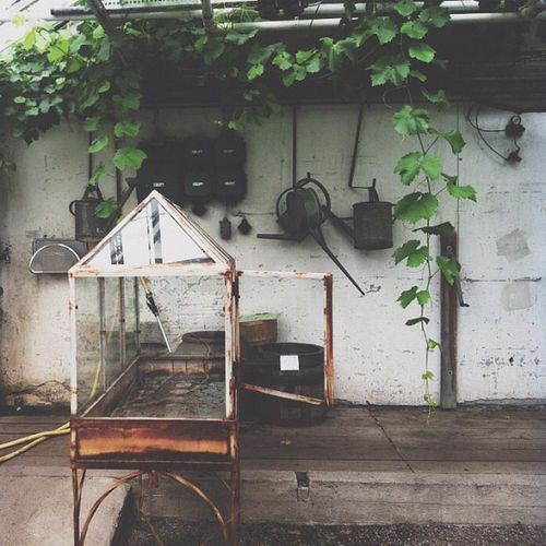 17 best images about garden potagers on pinterest for Garden shed gin