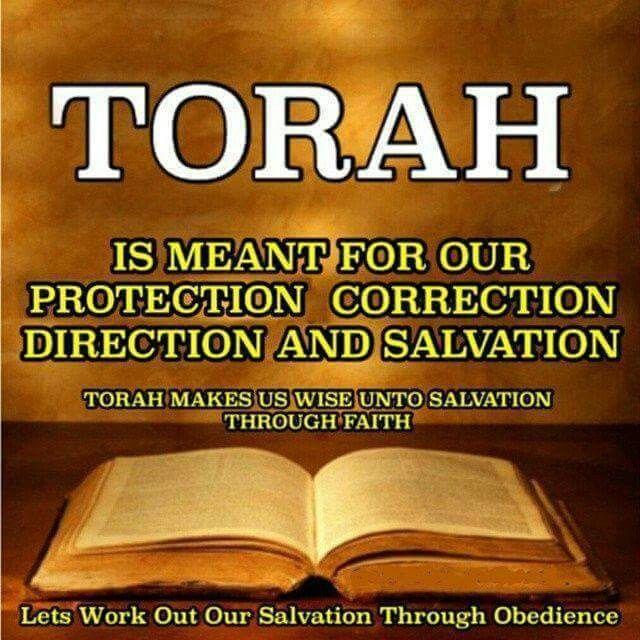 Image result for TORAH images
