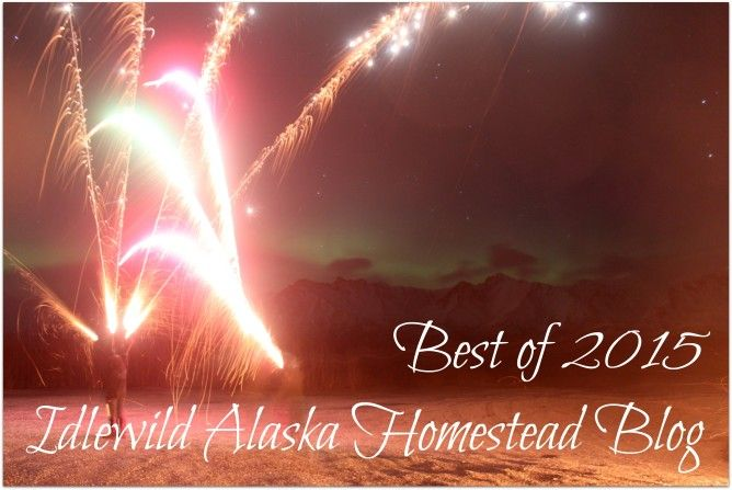 And just like that, 2015 is gone. Check out this collection of the best of 2015 Idlewild Alaska homestead blog!