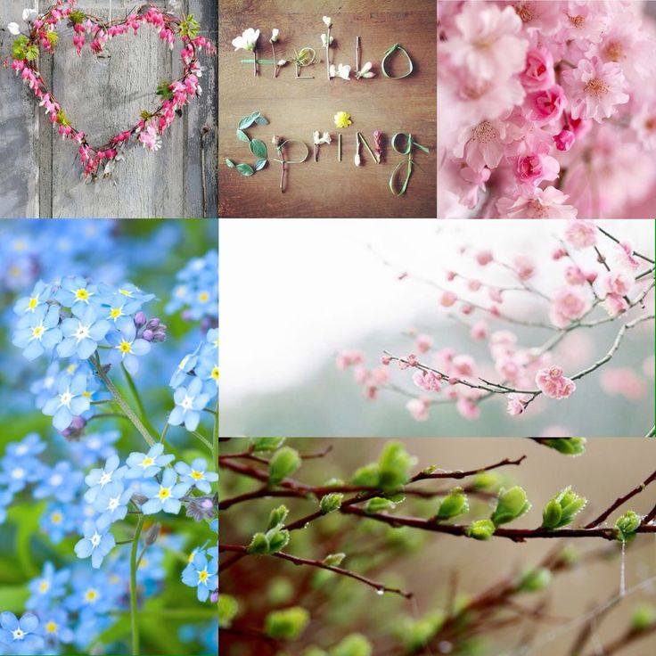 Hello Spring  herfst * winter * LENTE* zomer*