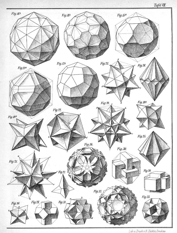 "Geometric shapes. Plates from the book: Max Bruckner, ""Vielecke und Vielflache"" (Leipzig, 1900)"