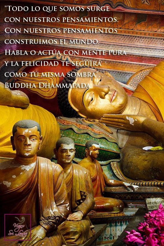 Todo lo que somos surge con nuestros pensamientos. Con ellos construimos el mundo. Habla o actúa con mente pura y la felicidad te seguirá como tu misma sombra. Buddha Dhammapada. Frases y Citas. #SriLanka