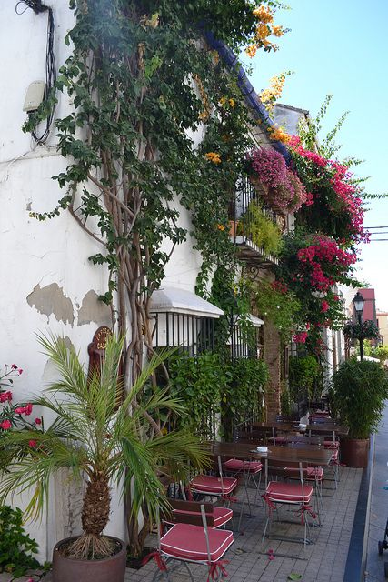 Beautiful street in Marbella old town, Andalusia, Spain. http://www.costatropicalevents.com/en/costa-tropical-events/andalusia/welcome.html