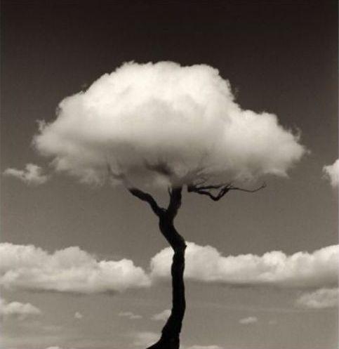 Cloud-tree by Spanish photographer Chema Madoz.