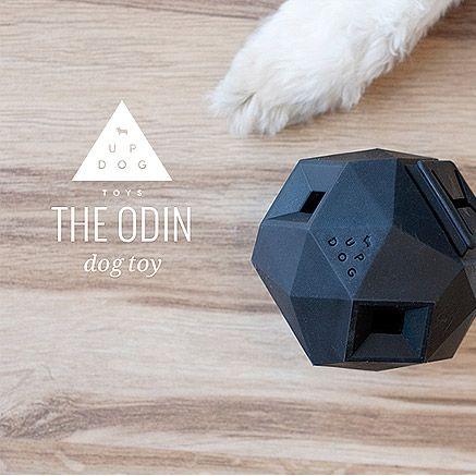 ODIN: MODERN, MODULAR PUZZLE TOY PER LO SVILUPPO MENTALE DEL TUO CANE  http://www.coco-pei.com/it/odin-modern-modular-puzzle-toy-per-lo-sviluppo-mentale-del-tuo-cane.html  #cocopeicom #dogaccessories #dogtoys #cocopei