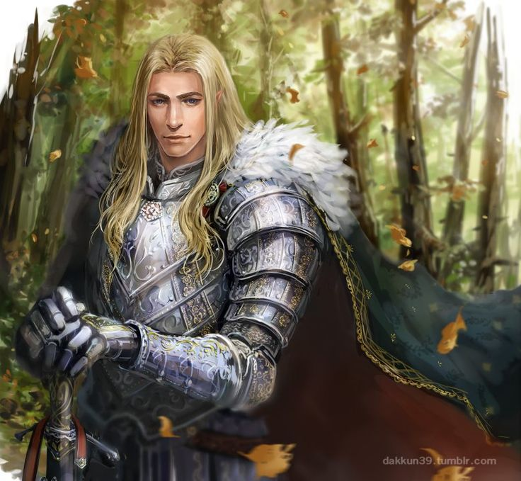 """Famous Noldor(?): Parentage unknown, Glorfindel was a Lord of Gondolin, renowned for his golden hair and warrior skills. He fell defeating a Balrog in the Fall of Gondolin. One of the mightiest Elves of Middle-earth in the Third Age, he was distinctive because of his return to Middle-earth after death, acting as an emissary of the Valar to aid Gil-galad and Elrond in the struggle against Sauron.  """"Glorfindel"""" by Dakkun39 (kazuo) on tumblr."""