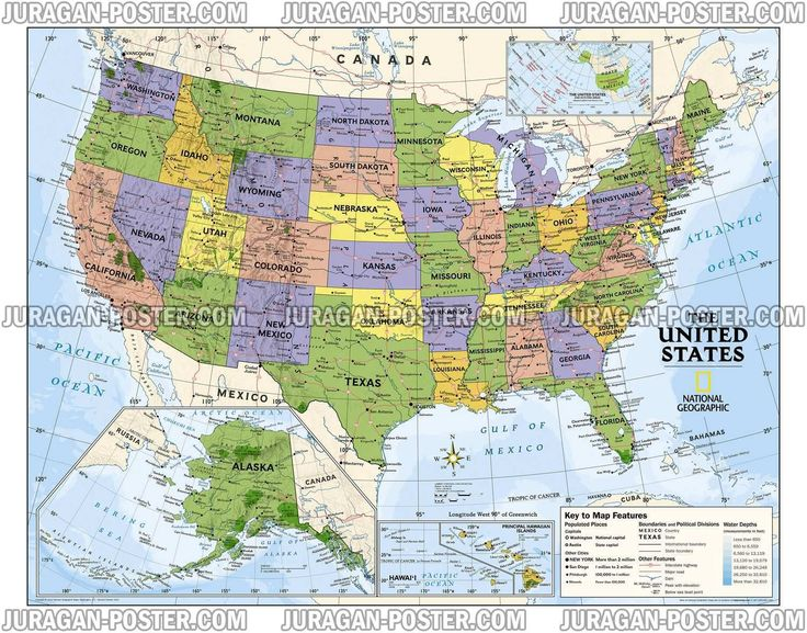 11 best map posters images on pinterest wall maps national national geographic kids political usa education map grades giant laminated poster laminated poster 130 x 102 cm gumiabroncs Image collections