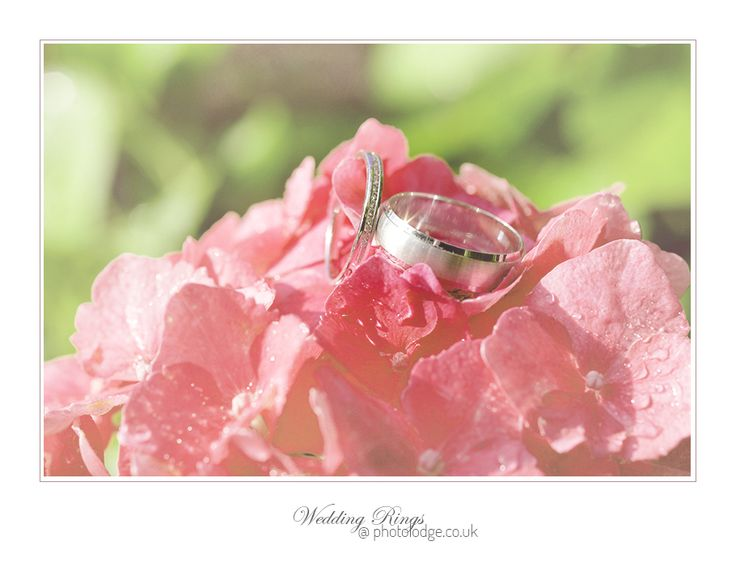 Wedding Rings 10