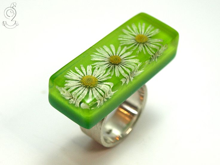 Daisy – tender blossom ring with three real daisies on a green bottom in resin on a 925 sterling silver ring  ///// © Isabell Kiefhaber www.geschmeideunterteck.de
