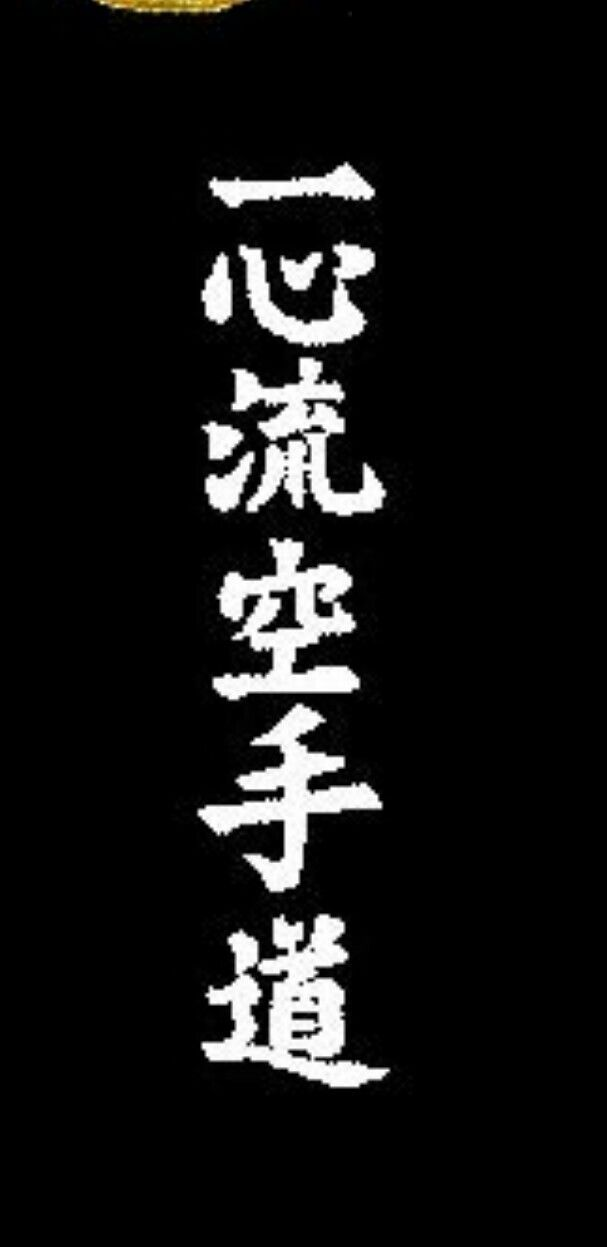 """Isshinryu Karate Do"""