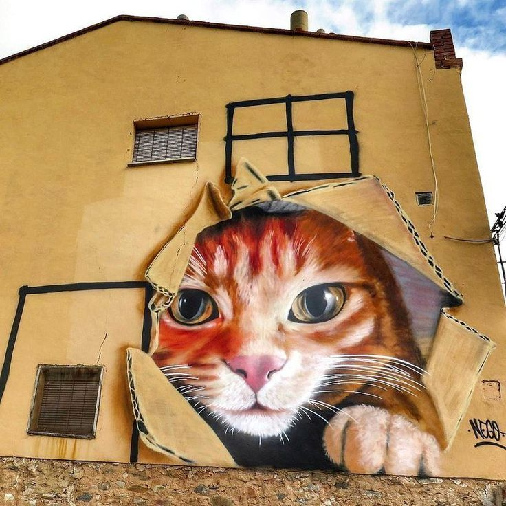 Картинки кот граффити
