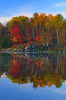 Autumn reflections in a beaver pond at dawn, Greater Sudbury (Walden), Ontario, Canada